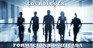 roles perfiles formacion programada bonificada continua